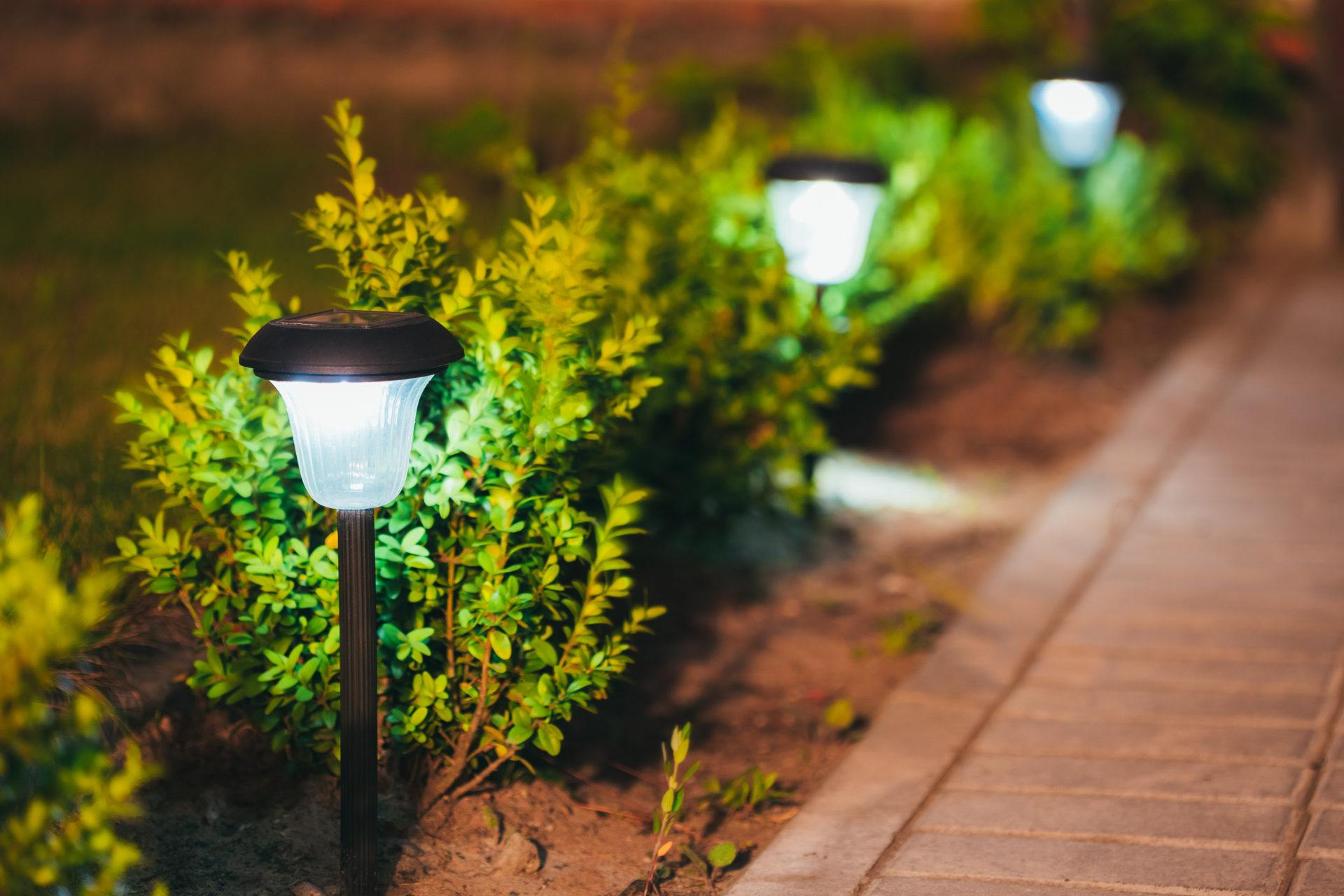 Different Types of Landscape Lighting for Your Estero Home